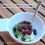 Yogur para la flora bacterina