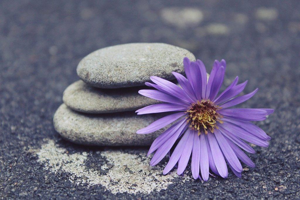 Reiki para el equilibrio y bienestar